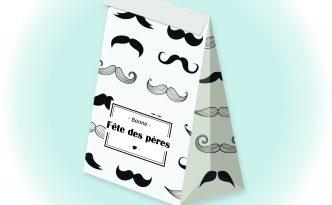 Sachet cadeau Moustaches - Fêtes vous même