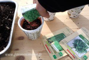 Aromates pour la Fête des Mères - semis - Fêtes vous même